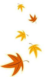autunno-foglie2