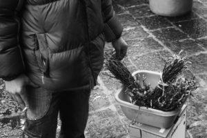 Foto venditore di asparagi - 01